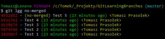 git log no merged